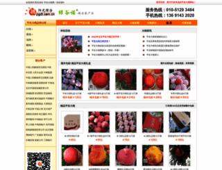 pgdt.com.cn screenshot