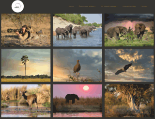 photosofafrica.com screenshot