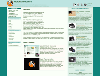picture-thoughts.com screenshot