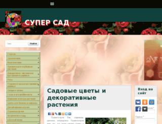 portegeclub.ru screenshot