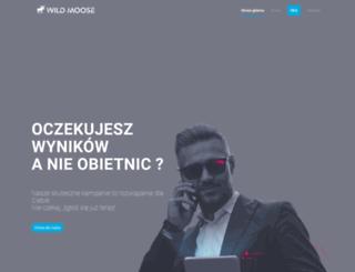 pozycjonowanie.poznan.pl screenshot