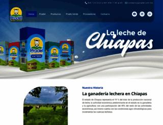 pradel.com.mx screenshot