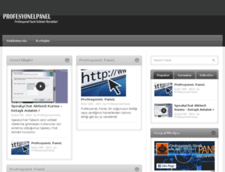 profesyonelpanel.net screenshot