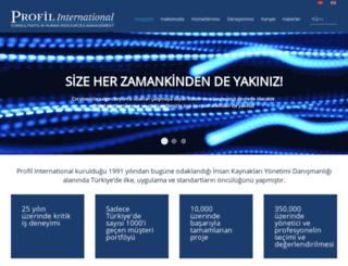 profilinternational.com screenshot