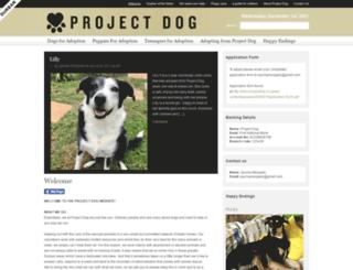 projectdog.co.za screenshot