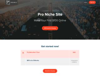 pronichesite.com screenshot