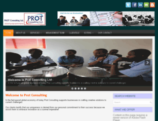 protconsulting.com screenshot
