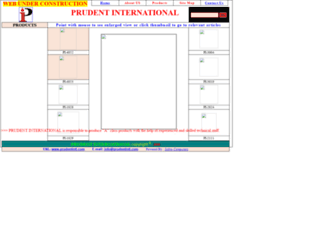 prudentintl.com screenshot