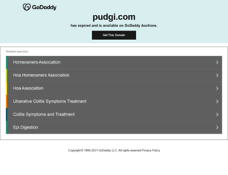 pudgi.com screenshot