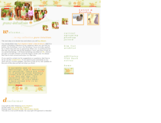 pure-intuition.org screenshot