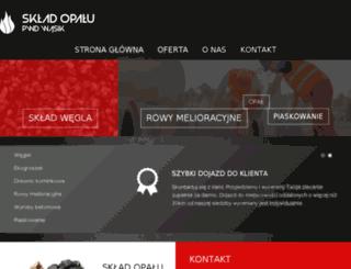 pwdwasik.pl screenshot