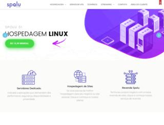 ravehost.com.br screenshot