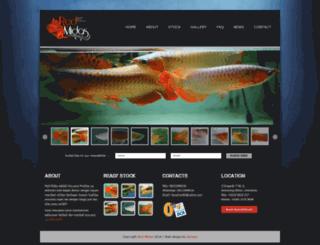 red-midas.com screenshot