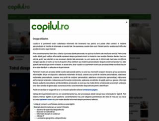 reduceri.copilul.ro screenshot