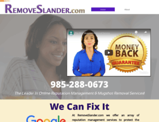 removeslander.com screenshot