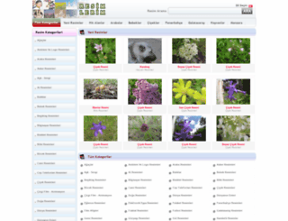 resimvip.com screenshot