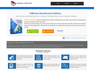restoreusbdrive.com screenshot