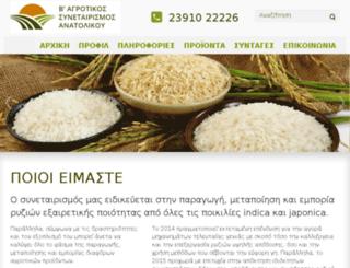 rizianatolikou.gr screenshot