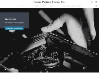 salinepictureframe.com screenshot