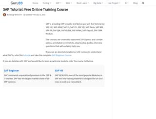 saptraininghub.com screenshot