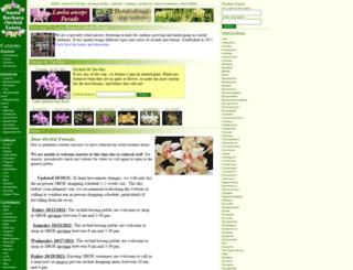 sborchid.com screenshot