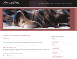 scaredycats.com.au screenshot