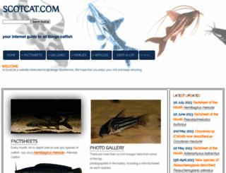 scotcat.com screenshot