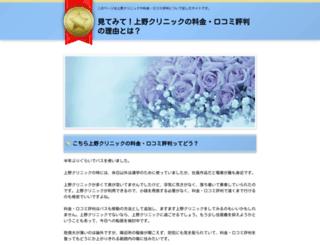 seimitsu-sika.com screenshot