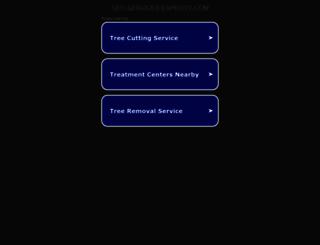 seo-services-experts.com screenshot