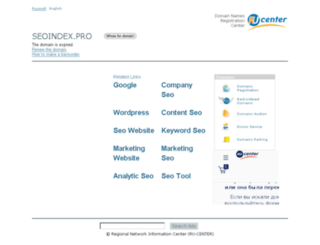 seoindex.pro screenshot
