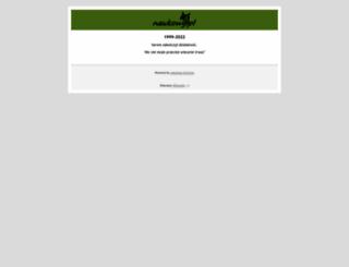 servis.pl screenshot