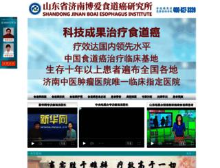 shidaoai.com screenshot