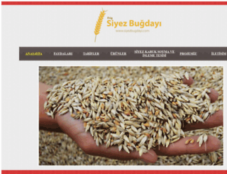 siyezbugdayi.com screenshot