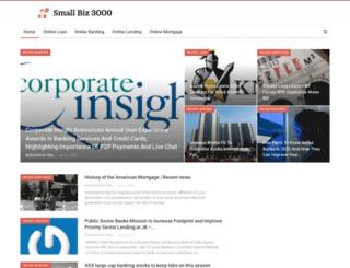 smallbiz3000.com screenshot