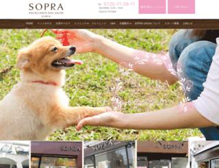 sopraginza.com screenshot