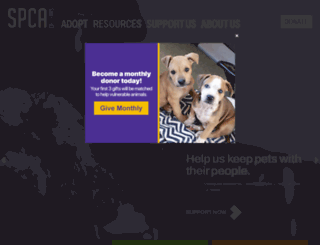 spca.org screenshot