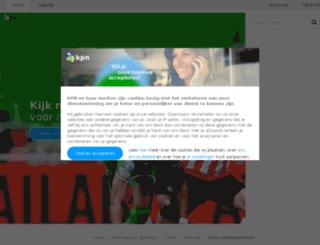speelotheeknijkerk.nl screenshot