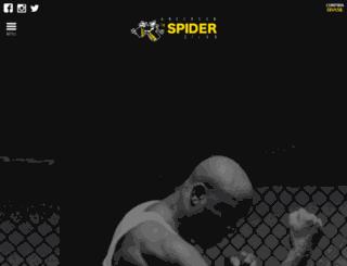 spideranderson.com screenshot