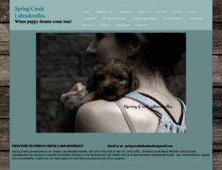 springcreeklabradoodles.com screenshot