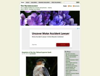 squirrelbasket.wordpress.com screenshot