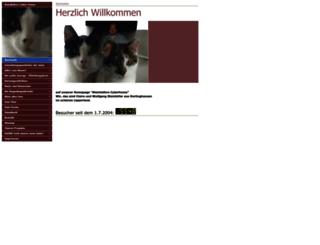 steinhoefer.com screenshot