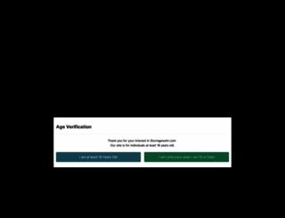 sturmgewehr.com screenshot