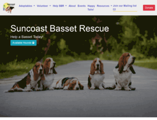 suncoastbassetrescue.org screenshot