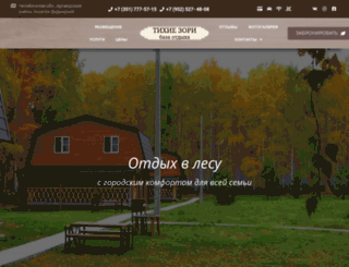 t-zori.ru screenshot