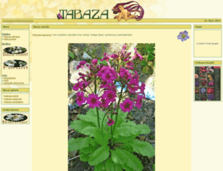tabaza.info screenshot