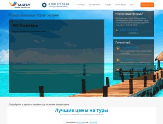 tagfly.ru screenshot