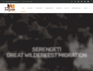 tanzaniabudgetsafari.com screenshot