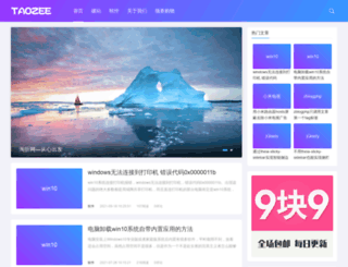 taozee.com screenshot