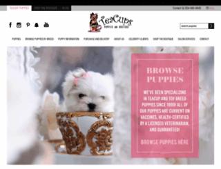 teacupspuppies.com screenshot