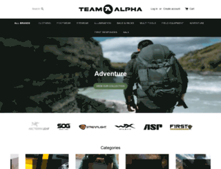 team-alpha.ie screenshot